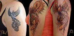 tetováni,Fenix, cover-up, rameno, arm